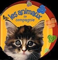 Langue au chat - Les animaux de compagnie.