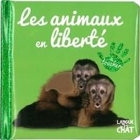 Langue au chat - Les animaux en liberté.
