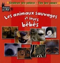 Langue au chat - Les animaux sauvages et leurs bébés.