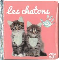 Langue au chat - Les chatons.