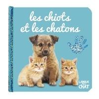 Langue au chat - Les chiots et les chatons.