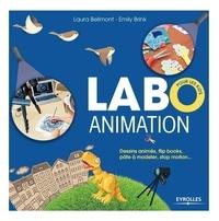 Rhonealpesinfo.fr Labo animation pour les kids - Dessins animés, flip books, pâte à modeler, stop motion... Image