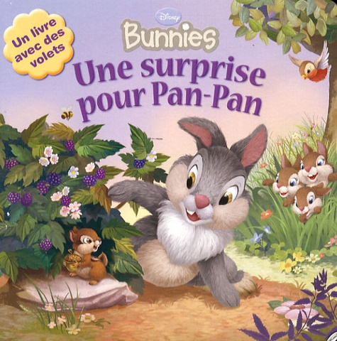 Laura Driscoll - Une surprise pour Pan-Pan.