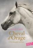 Lauren St John - Cheval d'Orage Tome 1 : Un champion sans prix.