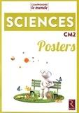 Laurence Dedieu et Michel Kluba - Posters sciences CM2.