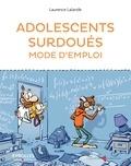 Laurence Lalande - Adolescents surdoués mode d'emploi.