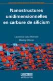 Laurence Latu-Romain et Maelig Ollivier - Nanostructures unidimensionnelles en carbure de silicium.