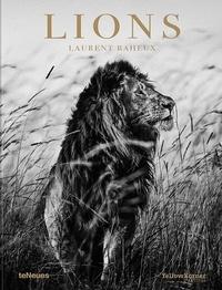 Laurent Baheux - Lions.