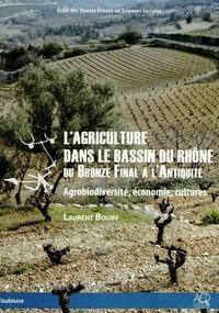 Laurent Bouby - L'agriculture dans le bassin du Rhône du Bronze final à l'Antiquité - Agrobiodiversité, économie, cultures.