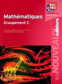 Ebook gratuit au format pdf télécharger Mathématiques, Terminale professionelle, Groupement C in French