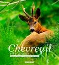Laurent Cabanau - Chevreuil, vif et gracile.
