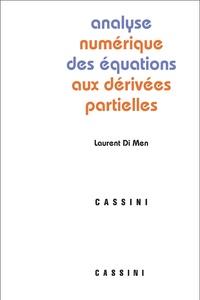Corridashivernales.be Analyse numérique des équations aux dérivées partielles Image
