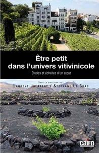 Etre petit dans lunivers vitivinicole - Etudes et échelles dun atout.pdf