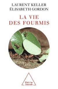 Laurent Keller et Elisabeth Gordon - Vie des fourmis (La).
