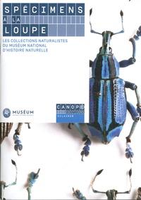 Spécimens à la loupe - Les collections naturalistes du Muséum national dhistoire naturelle.pdf