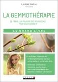 Laurine Pineau - Le grand livre de la gemmothérapie.