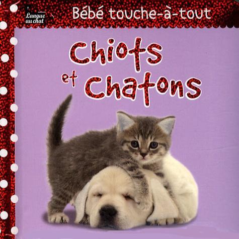 Léa Thomattéo - Chiots et chatons.