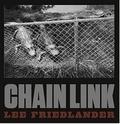 Lee Friedlander - Chain link.