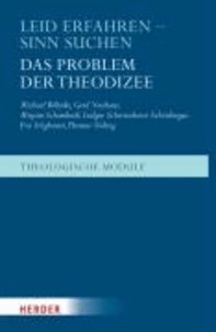Leid erfahren - Sinn suchen - Das Problem der Theodizee.