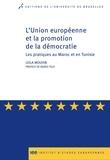 Leila Mouhib - L'Union européenne et la promotion de la démocratie - Les pratiques au Maroc et en Tunisie.