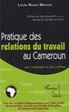 Léon Noah Manga - Pratique des relations du travail au Cameroun - Par l'exemple et les chiffres.