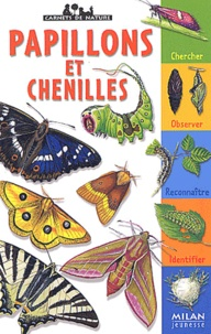 Léon Rogez - Papillons et chenilles.