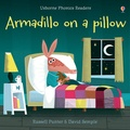 Lesley Sims - Armadillo on Pillow.
