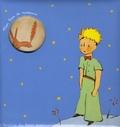 Librairie du petit jour - Mon livre de naissance Le Petit Prince.