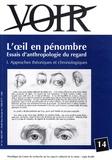 Raoul Dutry - Voir N° 14, Mai 1997 : L'oeil en pénombre : essais d'anthropologie du regard - Tome 1, Approches théoriques et chronologiques.