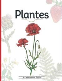 Lisa Garnier et Clotilde Palomino - Plantes.