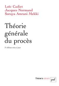 Loïc Cadiet et Jacques Normand - Théorie générale du procès.