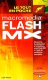 Loïc Fieux - Macromedia Flash MX.