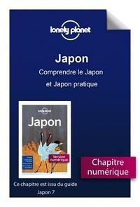 Ebooks téléchargés gratuitement aux Pays-Bas GUIDE DE VOYAGE par LONELY PLANET FR
