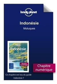 Lire des livres téléchargés sur Android GUIDE DE VOYAGE in French DJVU par Lonely Planet