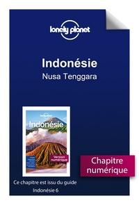 Télécharger pdf ebook gratuitement Indonésie - Nusa Tenggara