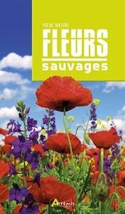 Losange - Fleurs sauvages.