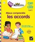 Lou Lecacheur - Mieux comprendre les accords CM1-CM2.