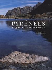 Louis Drouot - Pyrénées - Fugue en sol sauvage.