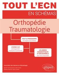 Louis Rony et Nicolas Ruiz - Orthopédie - Traumatologie.