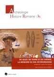 Luc Baray - De silex, de terre et de faïence, la mémoire du sol en Bourgogne - Hommage à Jean-Paul Delor.