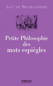 Luc de Brabandere - Petite philosophie des mots espiègles.