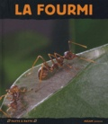 Luc Gomel - La Fourmi.