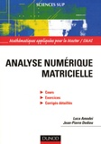 Luca Amodei et Jean-Pierre Dedieu - Analyse numérique matricielle - Cours et exercices corrigés.