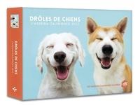 Luce Valli et Audrey Messiaen - L'agenda-calendrier Drôles de chiens.