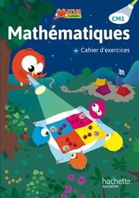 Lucien Castioni et Heidi Budon Dubarry - Mathématiques CM1 - Cahier d'exercices.
