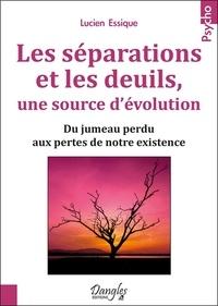 Feriasdhiver.fr Les séparations et les deuils, une source d'évolution - Du jumeau perdu aux pertes de notre existence Image