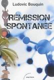 Ludovic Bouquin - Rémission spontanée.