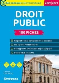 Ludovic Lestideau - 100 fiches sur le droit public - Droit constitutionnel, droit administratif, droit des finances publiques et droit européen.
