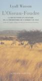 Lyall Watson - L'Oiseau-Foudre - La découverte en solitaire de la préhistoire de l'Afrique du Sud (Adrian Boshier 1939-1978).