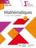 Lydia Misset-Rocherolle et Vincent Bernigole - Mathématiques enseignement commun 1re séries STMG-ST2S-STD2A-STHR  Calao - Livre de l'élève.